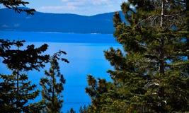 Meer Tahoe in Daling Royalty-vrije Stock Foto