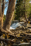 Meer Tahoe in Oktober royalty-vrije stock foto