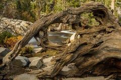 Meer Tahoe in Oktober royalty-vrije stock afbeeldingen
