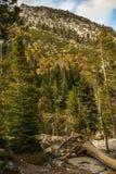 Meer Tahoe in Oktober stock foto