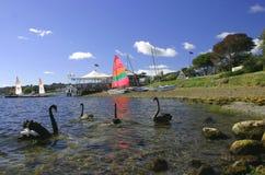Meer Taupo, Nieuw Zeeland Stock Fotografie