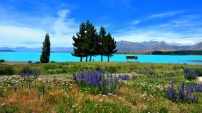 Meer Tekapo. Nieuw Zeeland Stock Afbeelding