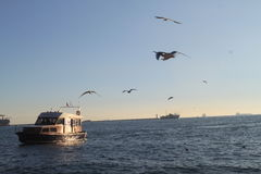 Meer und Boot Lizenzfreies Stockbild
