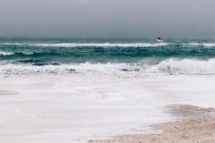 Meer und der Strand im Winter während Schneefälle und Wind, Stockfotografie