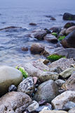 Meer und Felsen am Sonnenuntergang. Lizenzfreies Stockfoto