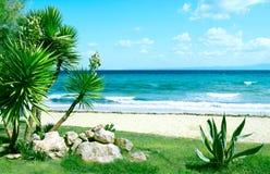 Meer und Gras unter blauem Himmel Stockbild