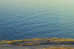 Meer und Hund Stockbild