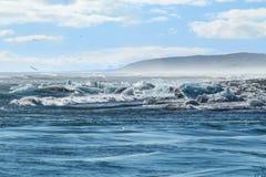 Meer und Küstenlinie mit Eisbergen stockfotografie