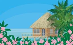 Meer und Plumeria Lizenzfreies Stockfoto