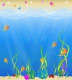 Meer und Ufer Stockbilder