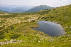 Meer van de Carpatian het groene berg Stock Fotografie