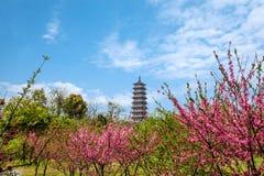 Meer van het Yangzhou het Slanke Westen op de tuin Stock Fotografie