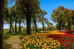 Meer van het Yangzhou het Slanke Westen op de tuin Stock Afbeeldingen
