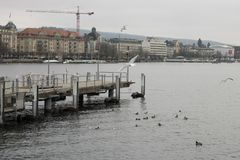 Meer van Zürich, Switzetland, die in Europa reizen royalty-vrije stock fotografie