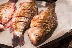 Meer verse karper op een baksel vóór het bakken van close-up De vissen van de rivier Stock Fotografie