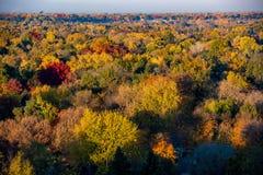 Meer von Fallbäumen in der vollen Herbstfarbe, wie von oben gesehen lizenzfreie stockfotografie