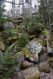 Meer von Felsen nahe kleinem Strom Vydra, Tschechische Republik Stockfotografie