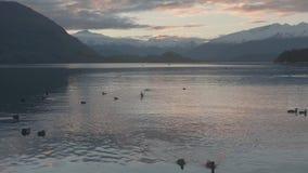 Meer Wanaka en MT die in de Herfst streven stock videobeelden