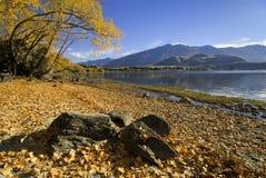 Meer Wanaka, Glendhu Baai, Nieuw Zeeland Stock Foto's