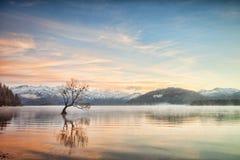 Meer Wanaka Otago Nieuw Zeeland stock fotografie