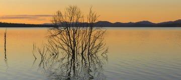 Meer Wivenhoe in Queensland in de loop van de dag Royalty-vrije Stock Foto