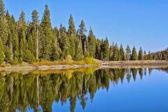 Meerbezinning altijdgroene Tahoe Californië stock foto's