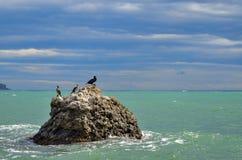 Meerblick, der Stein mit Vögel auf dem Hintergrund des Meeres, Wolken auf einem blauen Himmel, Krim Lizenzfreie Stockbilder