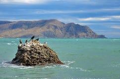 Meerblick, der Stein mit Vögel auf dem Meer, auf dem Hintergrund des Kaps Meganom, Krim Stockbild