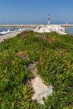 Meerblick mit Frühlingsblumen und -pier in Skala Sotiros, Thassos-Insel, Griechenland Lizenzfreie Stockfotografie