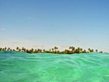 Meerblick mit grünem Wasser und tropischen Bäumen auf dem Horizont stockbilder