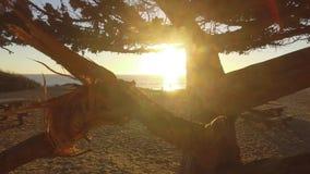 Meerblick und Geologie, Malibu, CA stock video