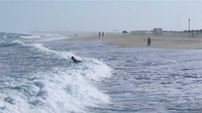 Meerblick und Leute, die in Tavira-Insel surfen stock video