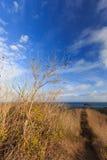 Meerblick vom Hügel lizenzfreies stockfoto