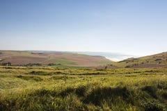 Meerblick von der Küste des Opals Stockbilder