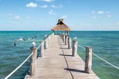 Meerblick von einem Pier mit Seemöwen hockte auf beiden Seiten von ihm und von einem Grasdach am Ende stockfotografie