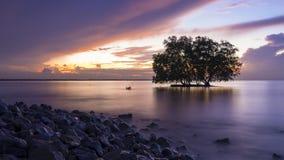 Meerblick vor Sonnenaufgang Stockfotos