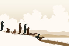 Meercat lookouts. Editable vector illustration of African meerkats at a lookout Royalty Free Stock Photo