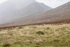 Meerdistrict, Cumbria - weiden en heuvels op een sombere dag stock fotografie