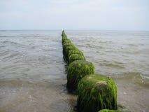 Meeresausblick Stock Image
