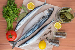 Meeresfisch (Makrele, Makrelenhecht) und Gewürze Stockbilder