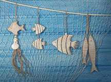 Meeresflora und -fauna-Dekoration Stockbild