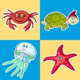 Meeresflora und -fauna Karte für Kinder Lizenzfreie Stockfotos