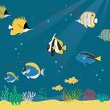 Meeresflora und -fauna-Sammlungssatz Stockfoto