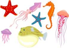 Meeresflora und -faunaillustration Lizenzfreies Stockfoto