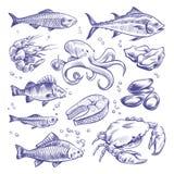 Meeresfrüchte übergeben gezeichnet Seefischausternmiesmuschelhummer-Kalmarkrake kratzt natürliche Meeresfrüchte der Garnelenlachs stock abbildung