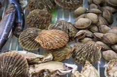Meeresfrüchte Lizenzfreies Stockbild