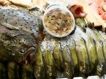 Meeresfrüchte auf dem Zähler Lizenzfreies Stockfoto