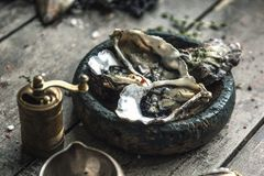 Meeresfrüchte Frische Austern, Miesmuscheln auf hölzernen Brettern lizenzfreie stockfotos