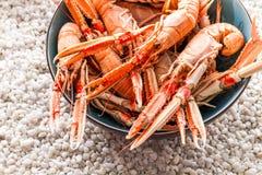 Meeresfrüchte gedient stockfotos