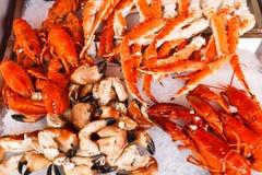 Meeresfrüchte im Bergen-Fischmarkt Stockfotos